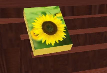 stephanie-sunflower-book